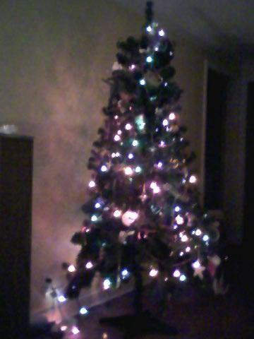 cmas-tree-jan09