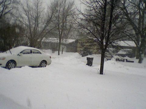 front-yard-12jan08
