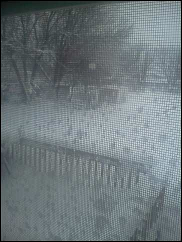 blizzard of 2012 2
